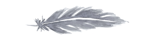 graphic imaged of grey feather, aligned horizontally