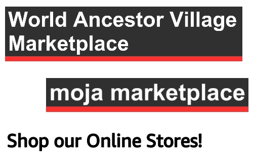 "Composite image of 2 online store header title banners, white text on black background with red bottom band, text reads, ""Shop our Online Stoes"""